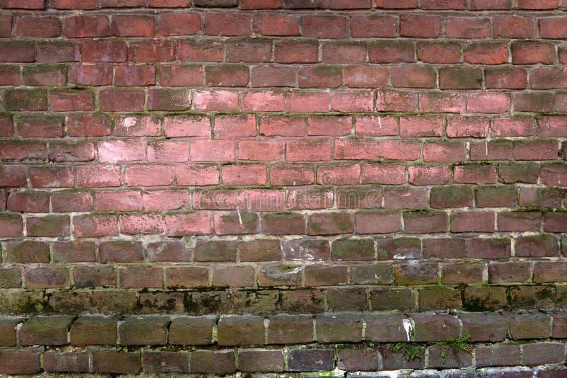 Parede de tijolo antiga, fundo, textura imagens de stock royalty free