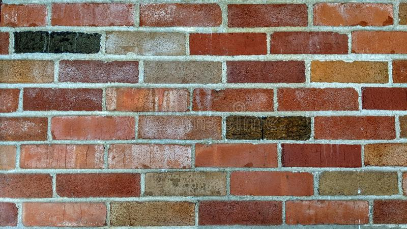 Parede de tijolo de diversas cores fotografia de stock royalty free
