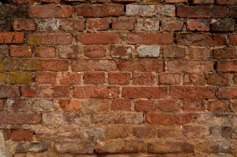 Parede de tijolo envelhecida foto de stock