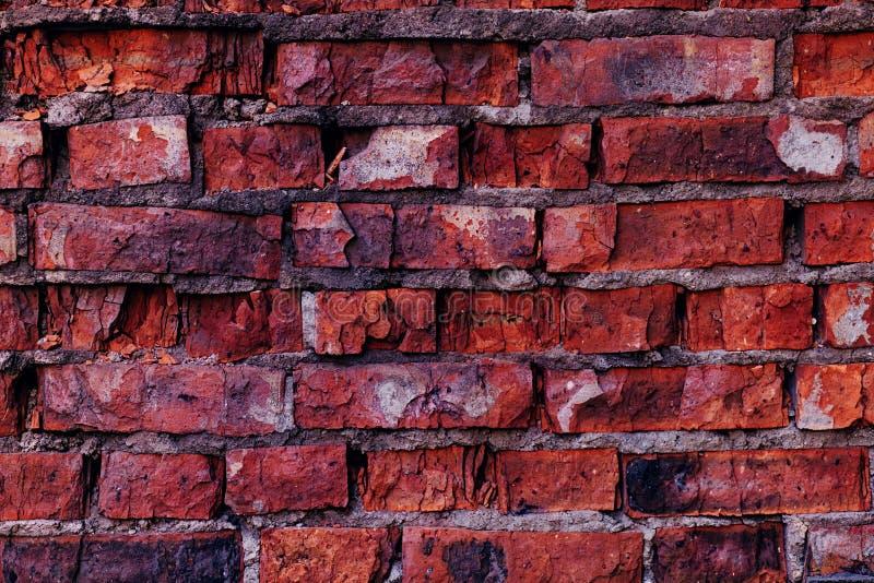 Parede de tijolo gasta vermelha foto de stock royalty free