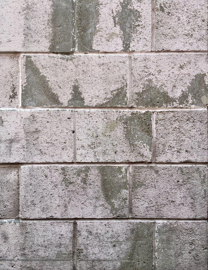 Parede de tijolo urbana suja rústica em branco e em cinzento fotos de stock royalty free