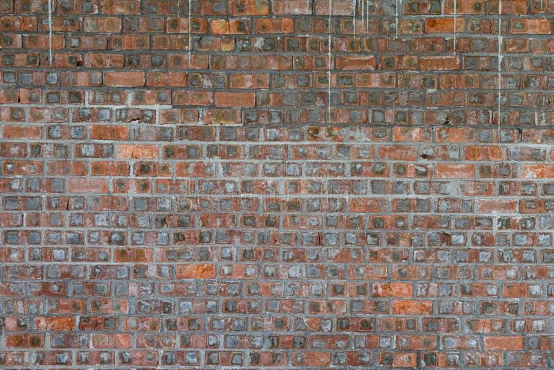 Parede de tijolo vermelho no formato quadrado como o fundo & a textura imagem de stock