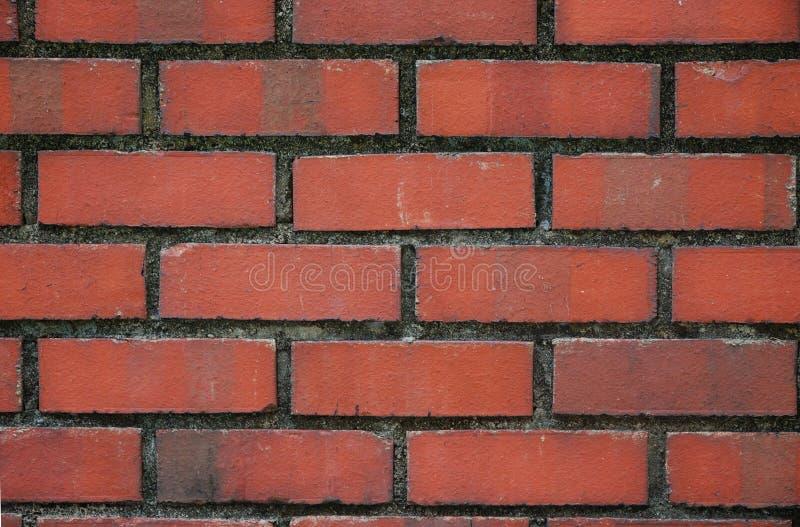 Parede de tijolos vermelhos fotografia de stock