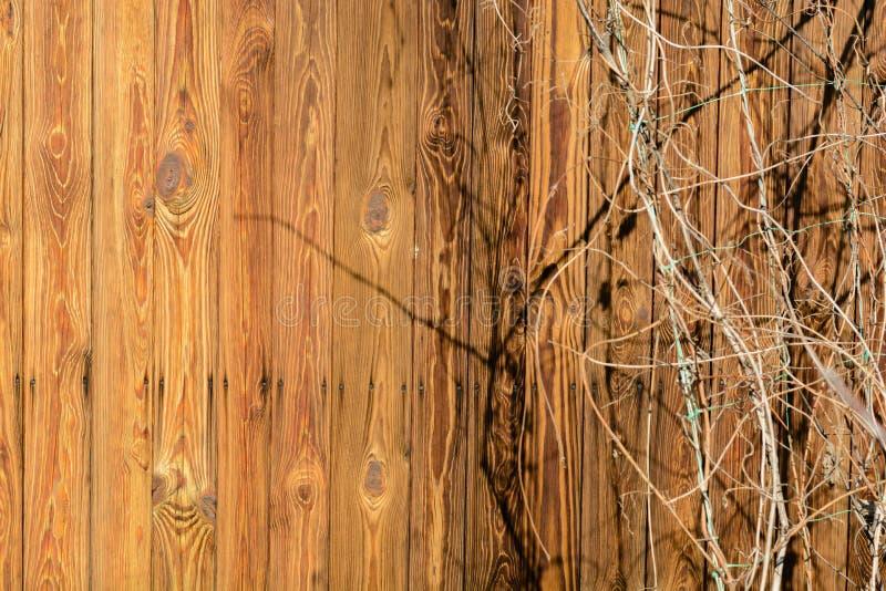 A parede de uma casa de madeira velha feita de venezianas verticais finas Placas resistidas e envelhecidas imagens de stock royalty free