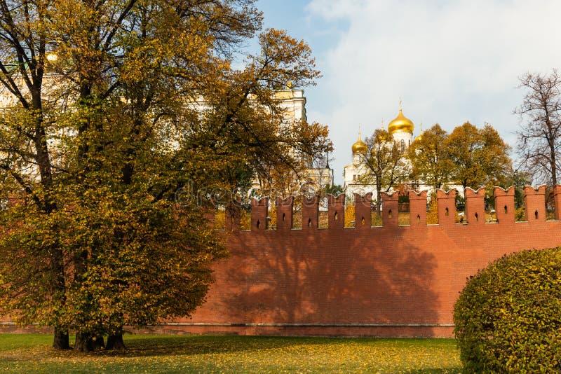 Parede do Kremlin de Moscou, abóbadas douradas da catedral do aviso fotografia de stock royalty free