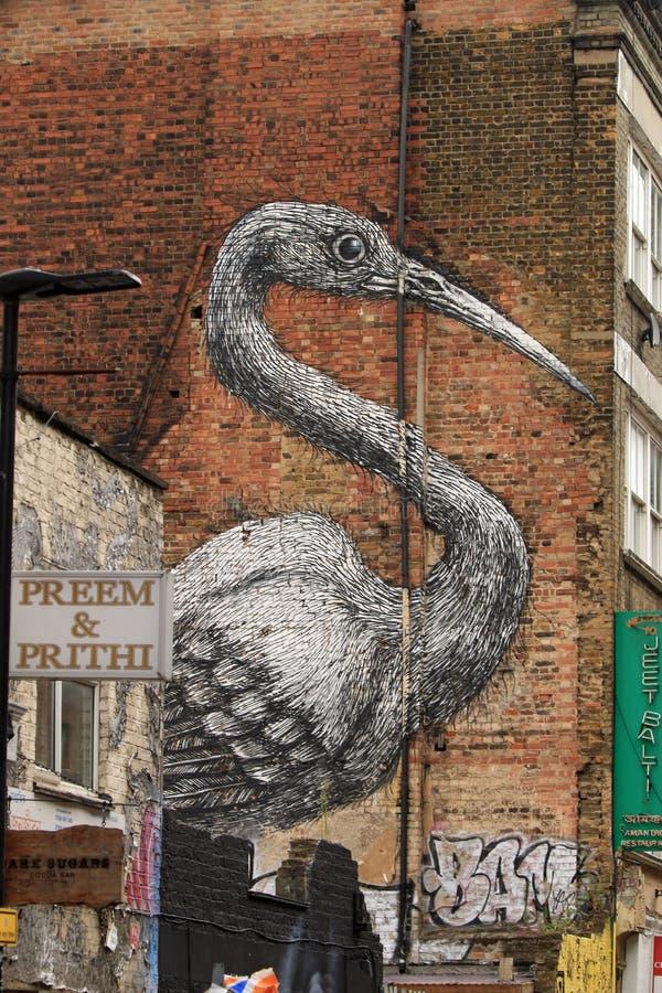 Parede do pelicano imagens de stock royalty free
