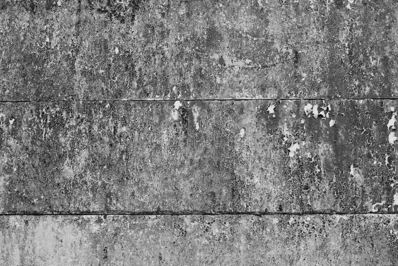 A parede está completa do musgo imagens de stock royalty free