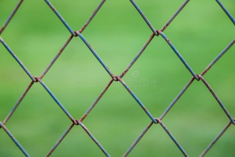 Parede quadrada do fio com fundo verde obscuro fotos de stock