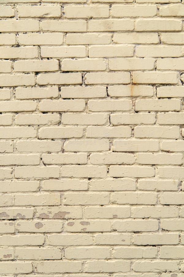 Parede Textured, expressivo de tijolos luz-coloridos foto de stock