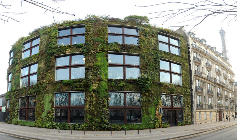 Parede vegetal em Paris imagem de stock