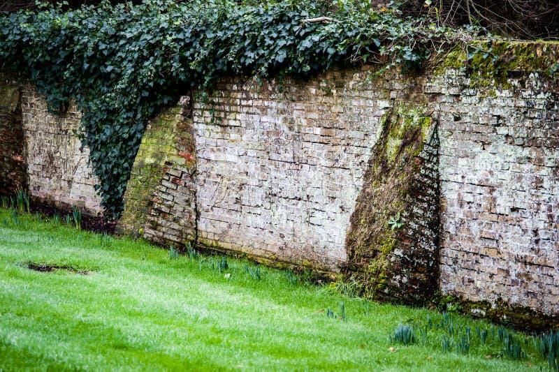 Parede velha do jardim com butresses do tijolo fotografia de stock