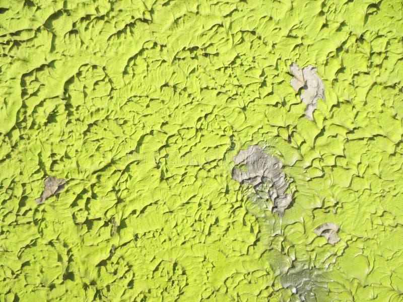 Parede verde, fundo, arte foto de stock royalty free