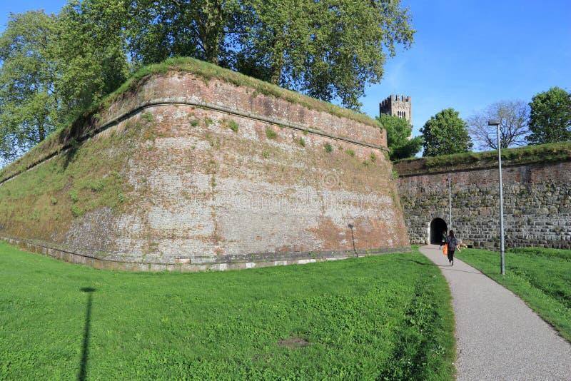 Paredes da cidade de Lucca foto de stock royalty free