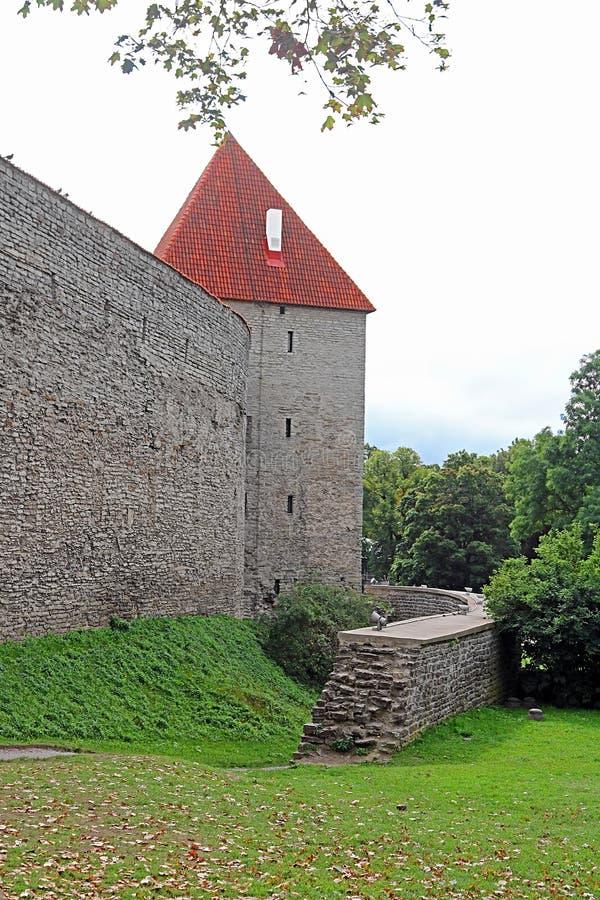 Paredes de la fortaleza de Tallinn, Estonia Las paredes y las muchas puertas siguen siendo en gran parte extant hoy foto de archivo