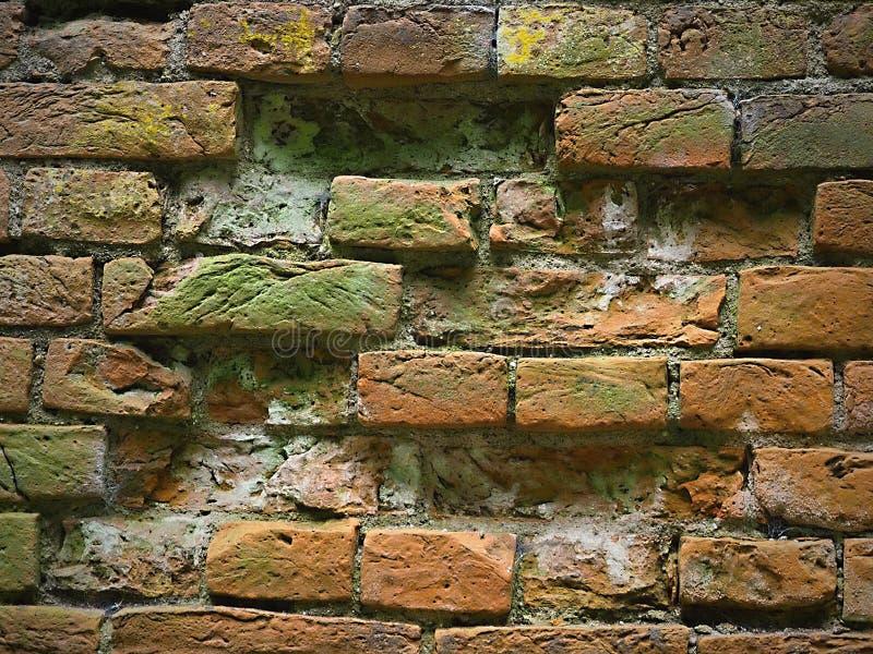 Paredes de ladrillo torcidas viejas, en alguna parte ladrillos que falta, coloración interesante después de años imágenes de archivo libres de regalías