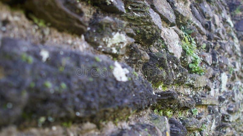Paredes de pedra do castelo de Lanceston, Cornualha foto de stock