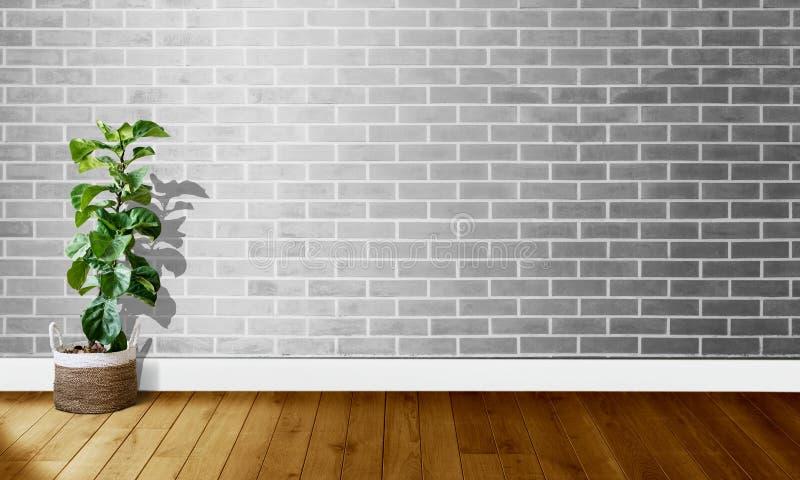 Paredes de tijolo cinzentas brancas com assoalhos de madeira e árvore com luz natural para a fotografia do fundo fotografia de stock