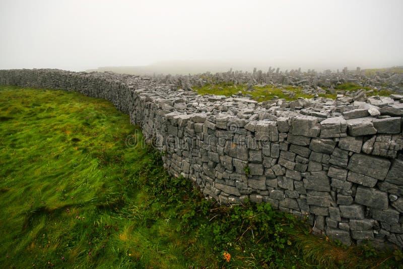Paredes de tijolo de pedra que aumentam da grama macia perto do Dun Aonghasa - sem foto de stock royalty free