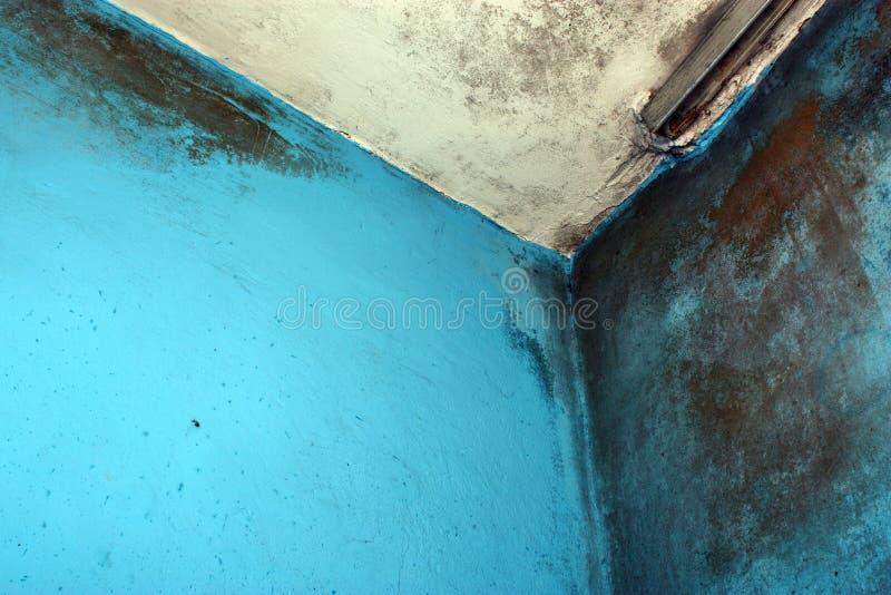 Paredes y techo mohosos imagen de archivo