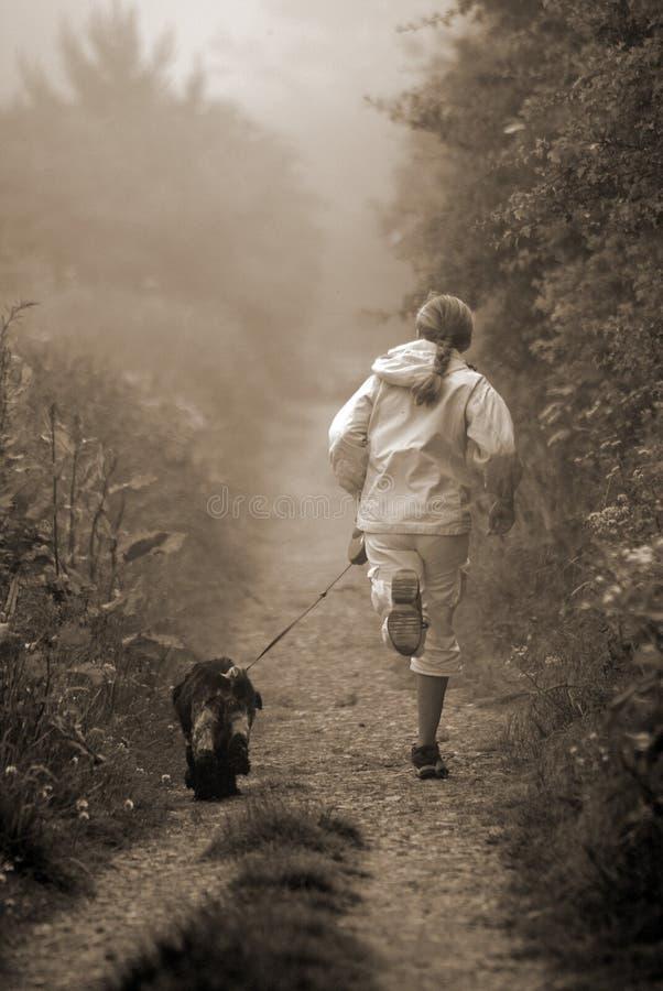 Pareggiando con il cane fotografia stock