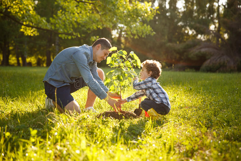 Parent and child planting tree royalty free stock photos