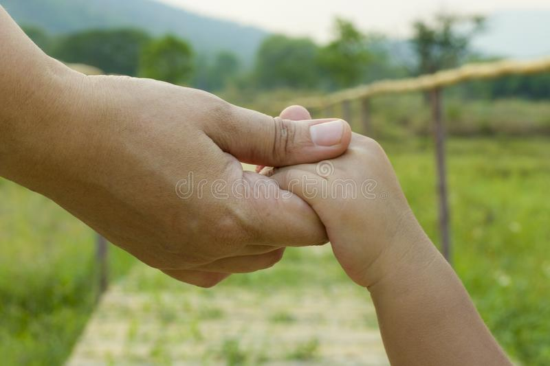 Parent holds the hand of a little child green background, soft focus stock images