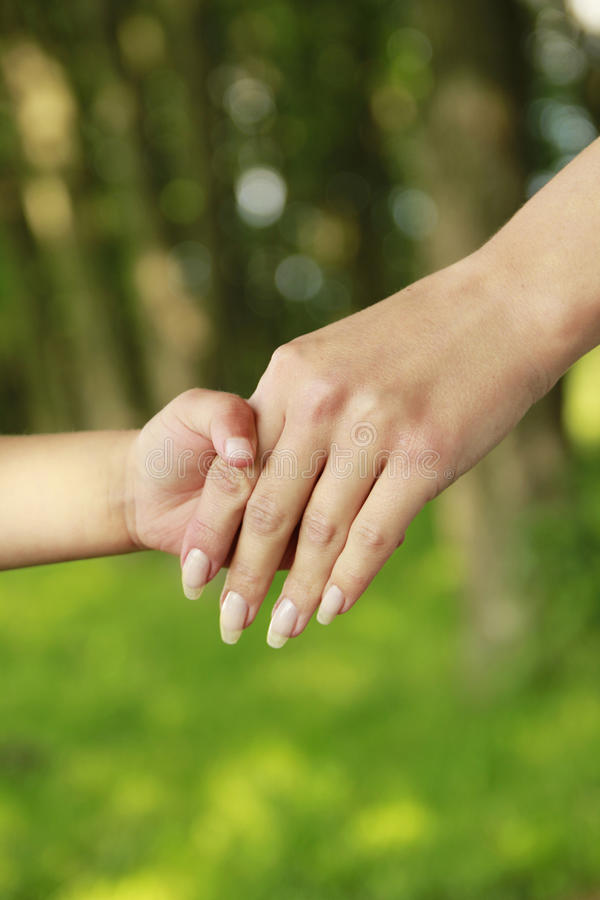 Download Parent Holds The Hand Of A Small Child Stock Photo - Image of accepting, baby: 33703362