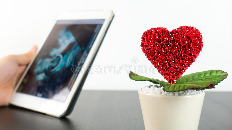 Parent is looking at ultrasound scan with love growing. Concept royalty free stock images