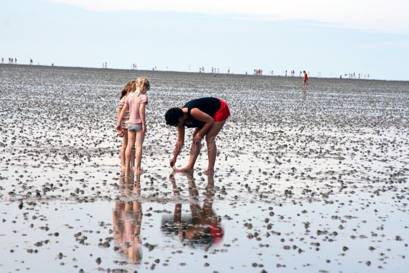 Parenting am Strand lizenzfreie stockfotografie