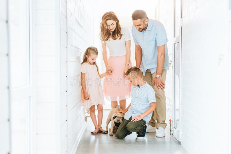Parents and children looking at adopted pug dog in corridor of animals. Shelter royalty free stock images
