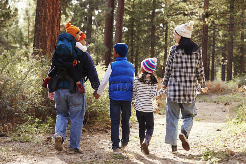 Parents and children walking in a forest, back view close up stock images