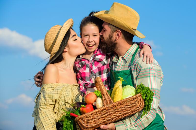 Parents and daughter farmers celebrate harvest holiday. Family farmers hug kiss kid hold basket fall harvest. Family. Gardener basket harvest blue sky royalty free stock photo