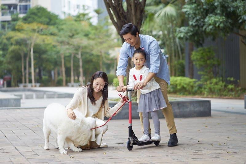 Parents et fille asiatiques jouant le scooter tandis que chien de marche dans le jardin images stock