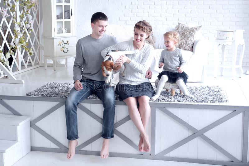 Parents and little girl playing with a dog stock photos