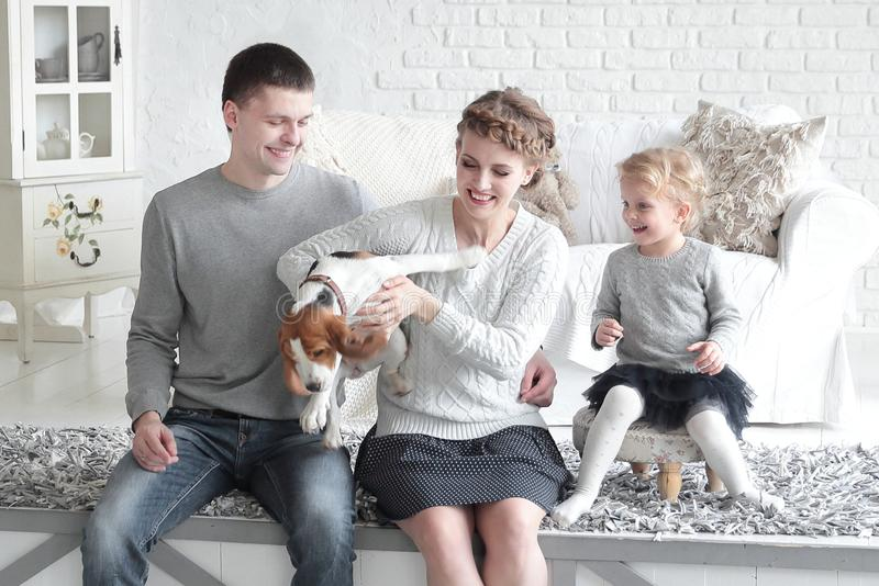Parents and little girl playing with a dog stock images