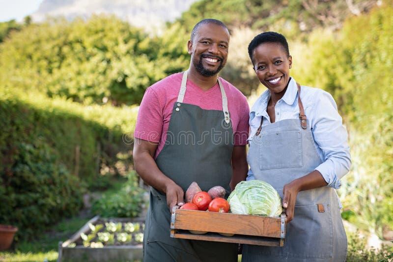 Pares africanos del granjero que sostienen el caj?n vegetal foto de archivo libre de regalías