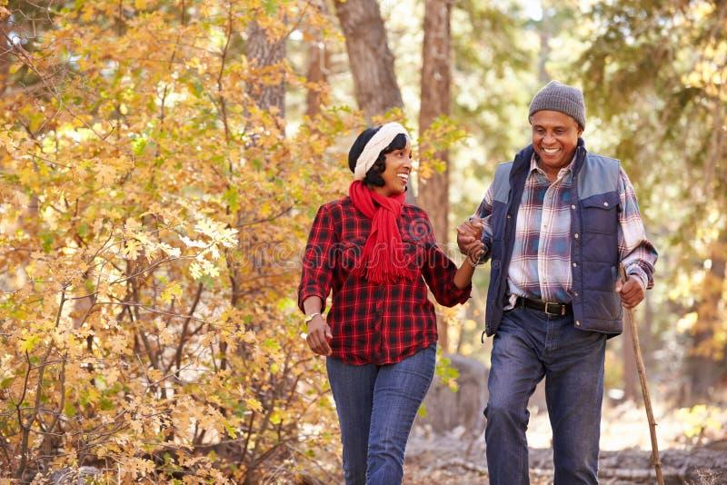 Pares afroamericanos mayores que caminan a través de arbolado de la caída fotos de archivo libres de regalías