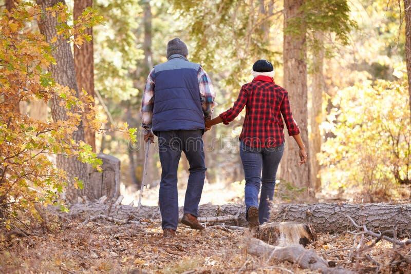 Pares afroamericanos mayores que caminan a través de arbolado de la caída foto de archivo