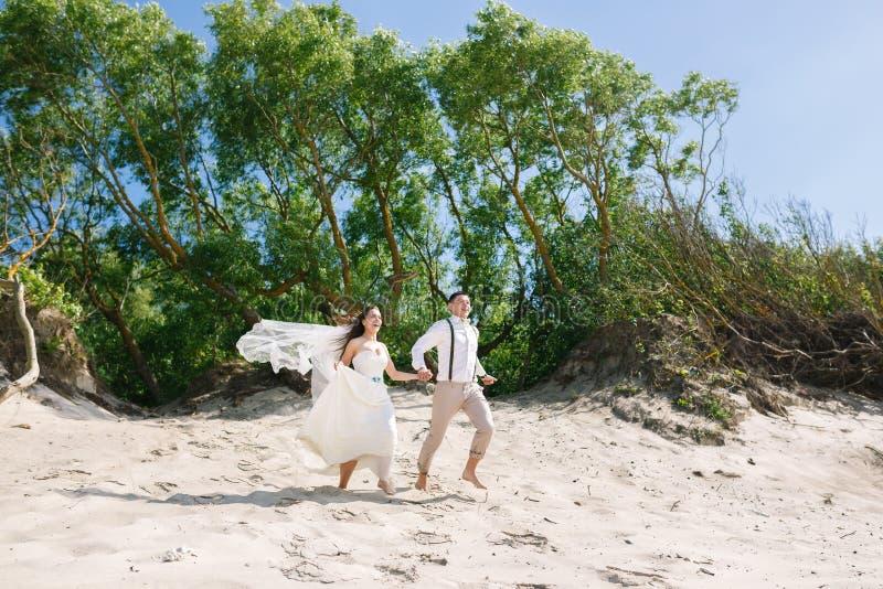 Pares alegres de la boda en la playa fotos de archivo libres de regalías