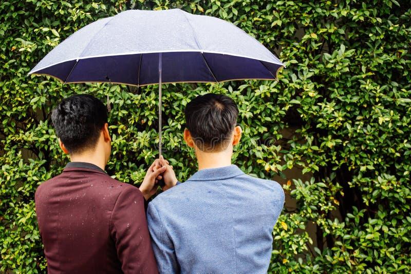 Pares alegres que mantêm o guarda-chuva e as mãos unidas Para trás dos homens homossexuais que andam na chuva foto de stock