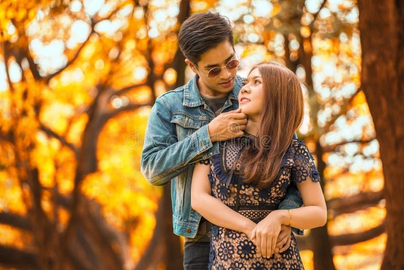 pares asiáticos novos felizes no amor que olha e que abraça-se queixo da terra arrendada do noivo da amiga e do beijo no outono fotografia de stock