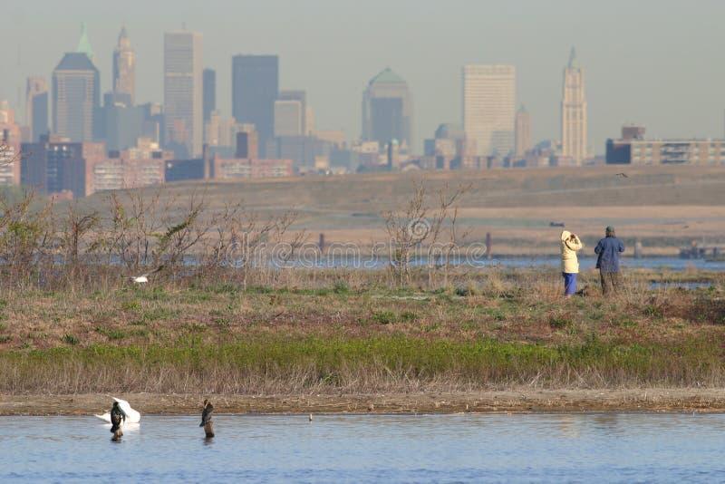 Pares birding con el fondo del horizonte de Manhattan foto de archivo