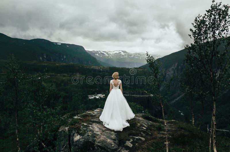 Pares bonitos do casamento que abraçam levemente Landsca bonito da montanha fotografia de stock