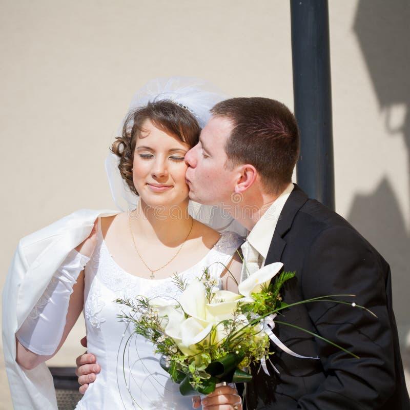 Download Pares do casamento foto de stock. Imagem de amor, considerável - 29841812