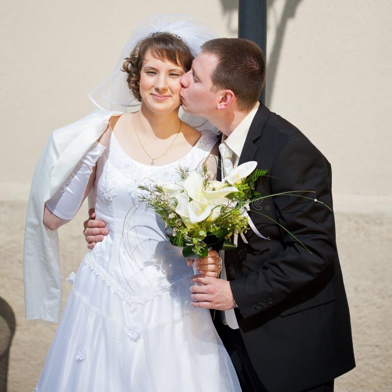 Download Pares do casamento imagem de stock. Imagem de emocional - 29841819