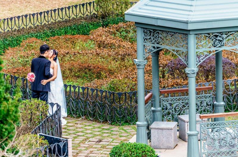 Pares cariñosos asiáticos jovenes en la boda que abraza y que se besa por el pabellón en jardín encima de Victoria Peak en Hong K foto de archivo