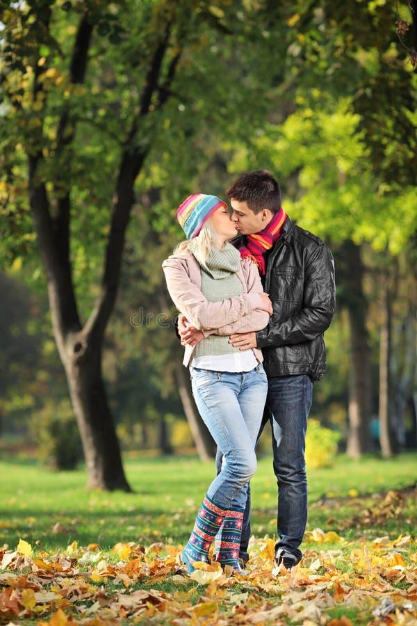 Pares cariñosos que se besan en el parque en otoño foto de archivo