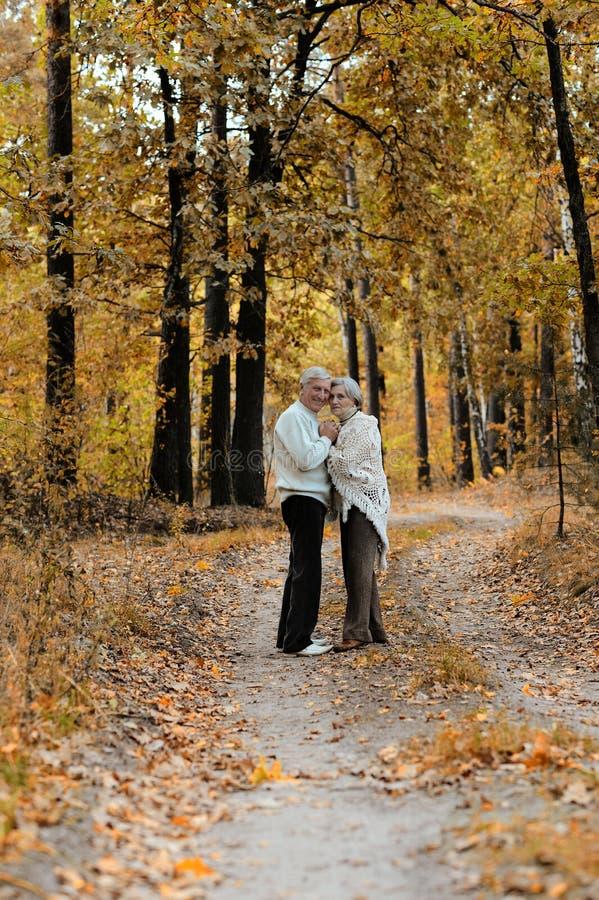 pares consideravelmente idosos foto de stock