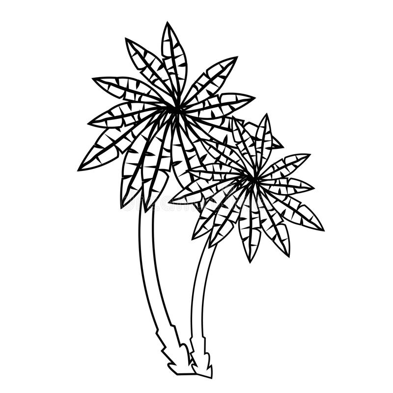 Pares da coloração de palmeiras Ilustração do vetor ilustração do vetor
