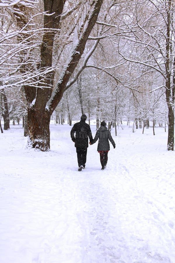 Pares da floresta do inverno fotos de stock royalty free